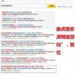 """雅虎搜索""""天津网络营销顾问""""结果"""